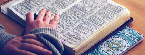 daily-bible-header
