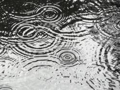 rain-ripples-on-pond-making-circular-patterns